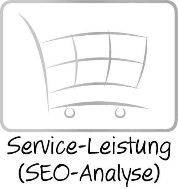 SEO-Analyse für Online-Shops und Websites
